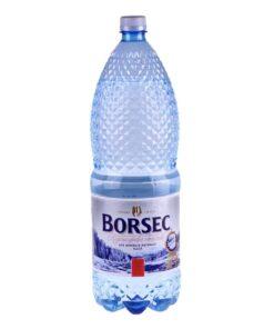 Apa Plata BORSEC minerala naturala 2 litri